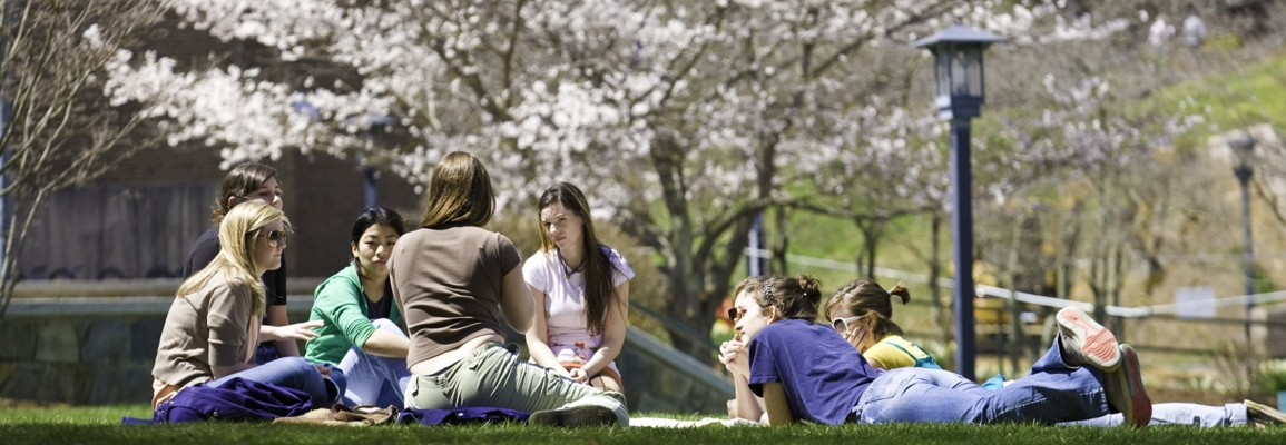 students in group sitting on the grass during spring time