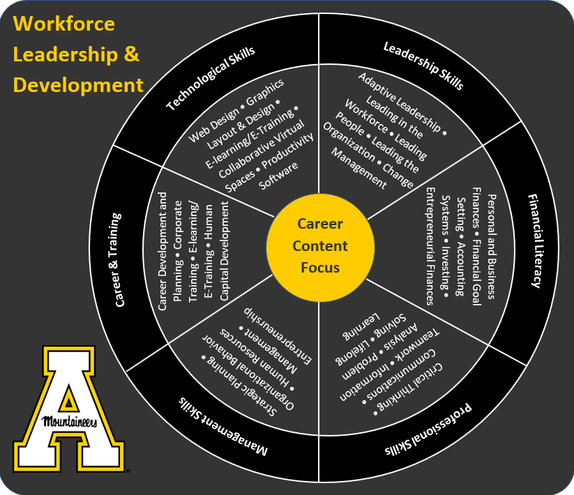 Workforce Program Explanation Diagram